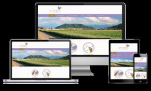 almano-bern.ch powered by Centifa Webdesign Bern